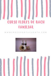 FLORES DE BACH abundancia438