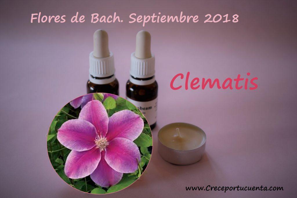clematis flor de bach