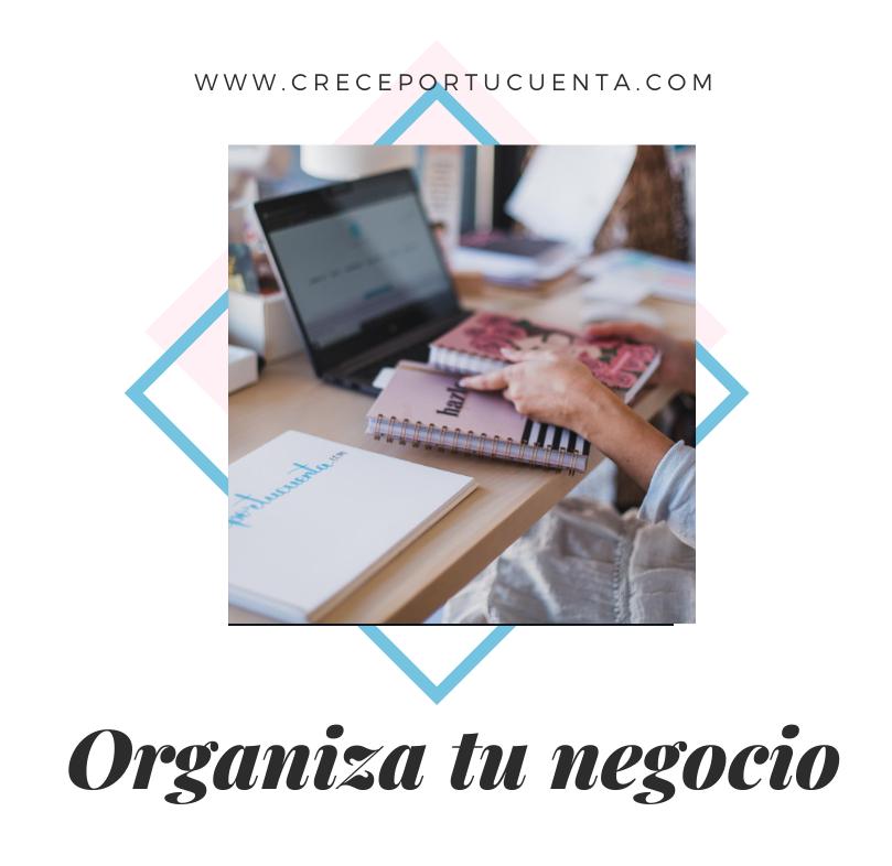 curso organiza tu negocio
