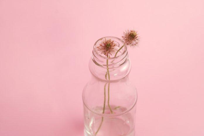 flor crecimiento personal